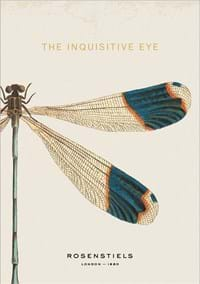 The Inquisitive Eye